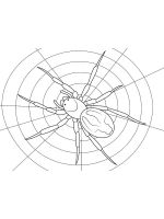Spider-coloring-pages-22