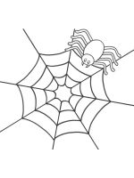 Spider-coloring-pages-24