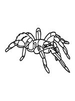 Spider-coloring-pages-31