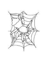 Spider-coloring-pages-38