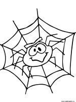 Spider-coloring-pages-4