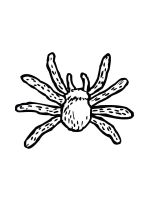 Spider-coloring-pages-40