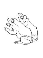 Toad-coloring-pages-4