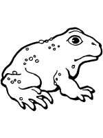 Toad-coloring-pages-7