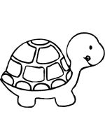 Tortoise-coloring-pages-1