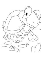 Tortoise-coloring-pages-12