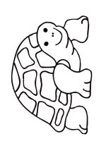 Tortoise-coloring-pages-3