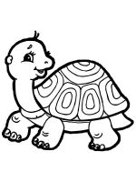 Tortoise-coloring-pages-8