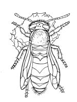 Wasp-coloring-pages-10