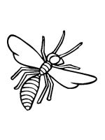 Wasp-coloring-pages-14