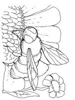 Wasp-coloring-pages-7