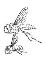 Wasp-coloring-pages-8