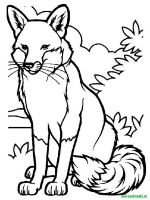 Wild-Animal-coloring-pages-15