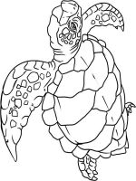 Wild-Animal-coloring-pages-16