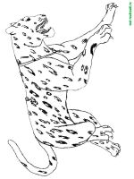 Wild-Animal-coloring-pages-21