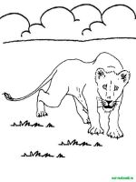 Wild-Animal-coloring-pages-29