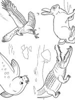 Wild-Animal-coloring-pages-35