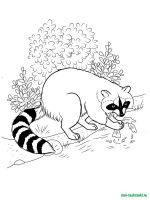 Wild-Animal-coloring-pages-41