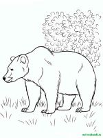 Wild-Animal-coloring-pages-42