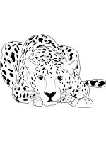 Wild-cats-coloring-pages-11