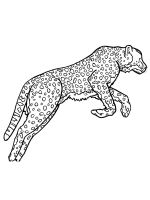 Wild-cats-coloring-pages-12