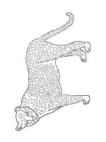 Wild-cats-coloring-pages-16