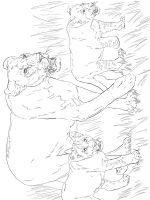 Wild-cats-coloring-pages-23