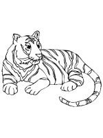 Wild-cats-coloring-pages-28