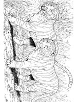 Wild-cats-coloring-pages-3