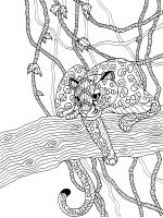 Wild-cats-coloring-pages-4