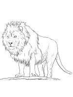 Wild-cats-coloring-pages-8