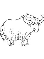 Yak-coloring-pages-1