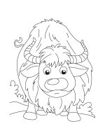 Yak-coloring-pages-11