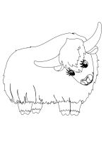 Yak-coloring-pages-13