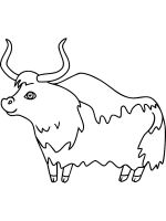 Yak-coloring-pages-14