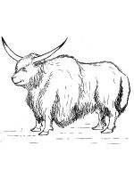 Yak-coloring-pages-17