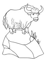 Yak-coloring-pages-19