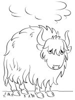 Yak-coloring-pages-4