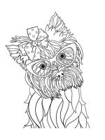Yorkshire-Terrier-coloring-pages-10