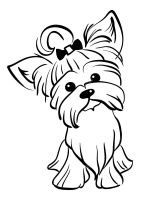 Yorkshire-Terrier-coloring-pages-6