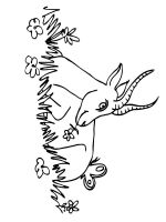 antelope-coloring-pages-1