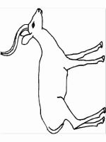 antelope-coloring-pages-9