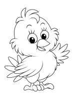 animals-baby-chick-coloring-pages-16