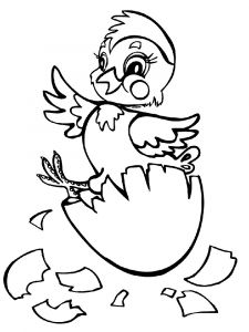 animals-baby-chick-coloring-pages-5