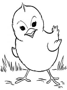 animals-baby-chick-coloring-pages-7