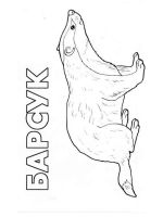 badger-coloring-pages-4
