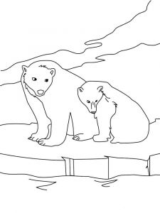 coloring-pages-animals-bear-13