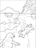 coloring-pages-animals-bear-18