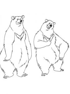 coloring-pages-animals-bear-2