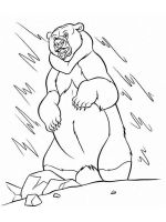 coloring-pages-animals-bear-20